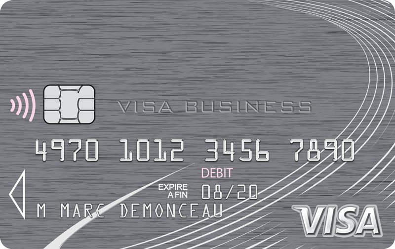 Carte Bleue Platinum.La Carte Visa Platinum Business Visa